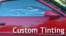 services_customtint